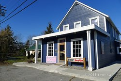 The Little Beetle Bistro