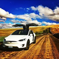 Tesla Winery Tours