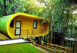 Ranches Jungle Beats Resorts