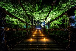 Vine Bridge, Ikedacho