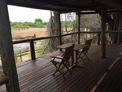 Amazing Experience , Amazing Staff , Amazing Wildlife, Amazing Lodge!!!