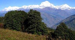 Nagarjun Forest Reserve