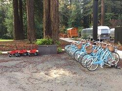 Wagons & bikes