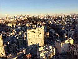 セルリアンフロア(35階以上)
