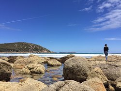 Picnic Bay - 2 Day Wilsons Promontory Tour