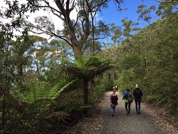 Mt Oberon Summit Walk - 2 Day Wilsons Promontory Tour