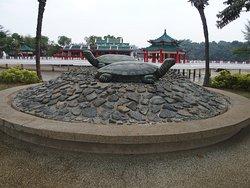 เกาะกูซู