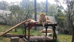 전주동물원