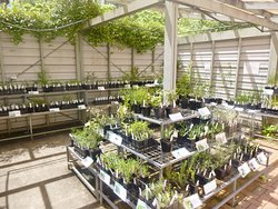 Eurobodalla Regional Botanic Gardens
