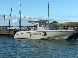 St.Kitts Nevis Charters