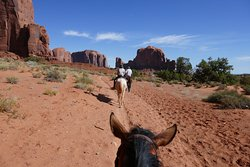Dineh Trail Rides