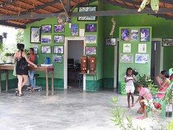 Community Kalunga of Engenho II