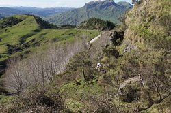 Mangaone Caves Track