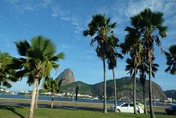 Flamengo district