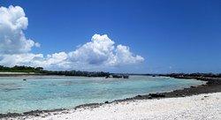 ' ' from the web at 'https://media-cdn.tripadvisor.com/media/photo-f/0d/e6/d2/d7/the-reefs.jpg'