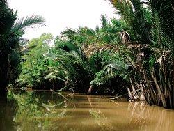 DinHo Ecotour