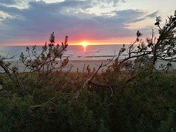 Plaża Dąbki