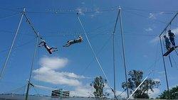 Circus Arts Gold Coast
