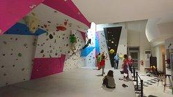 PXP Climbing Wall