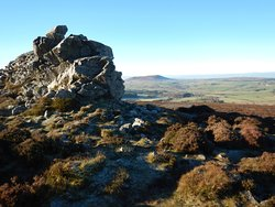 Stiperstones Nature Reserve