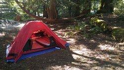 Delta Grove Campground, Cultus Lake Provincial Park