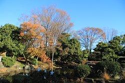 North Garden of the Diet Front Park