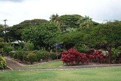 Queen Kapiolani Garden