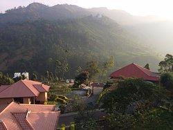 Superb Location, Natural Views, Prompt Management