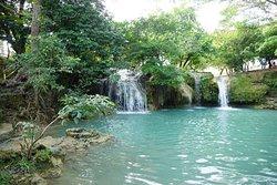 Tara Falls