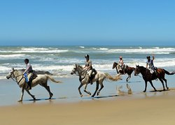 Wild Coast Horse Riding Adventures