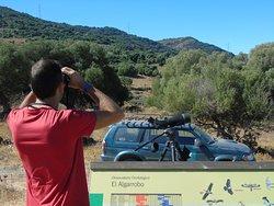 Wild Andalucia