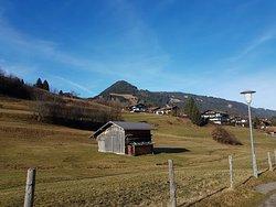 Alpine Wildlife Park