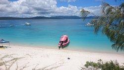 Hamilton Island Reef Ryder Tour