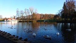 Rouken Glen Park