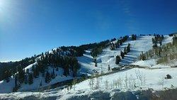 Powder Mountain SKi Resort
