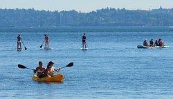 Northwest Paddle Surfers