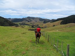 Colville Farm Holidays Horse Trekking