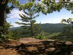 Mount Will Walking Trail