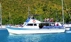 Captain Mike's - Sports Fishing and Whale Watching Tours