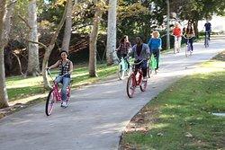 Pedego Juno Beach Electric Bikes