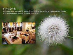 Ojas Spa and Wellness