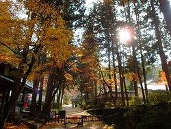 Itohara Family Garden