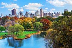 Centraal Park