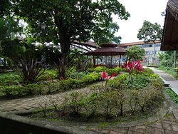 Jardín Botánico Universidad Tecnológica de Pereira