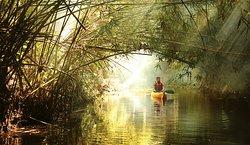 kayaking (236775533)