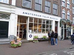 阿姆斯特丹郁金香博物馆