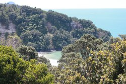 This is the view of Otarawirere Bay or Shelly Bay, just 20 minutes walk