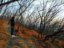 Vetal Hill