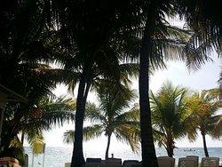 Linda, tranquila y refrescante vista de la playa