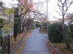 Nogawa Ryokuchi Park